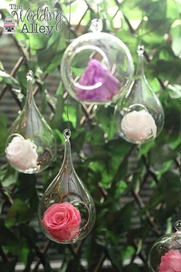 Enchanted_Rose_026