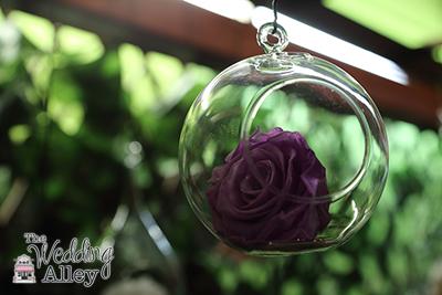 Enchanted_Rose_027 copy
